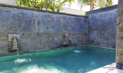 Image 3 from 1 Bedroom Villa For Monthly Rental in Sanur