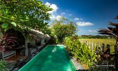 Image 2 from 2 Bedroom Ricefield View Villa For Monthly Rental in Kerobokan