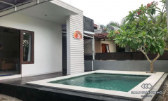 Image 1 from 2 Bedroom Townhouse For Rent & Sale in Kerobokan
