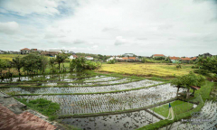 Image 3 from Villa de 3 chambres à louer au mois à Batu Bolong - Canggu