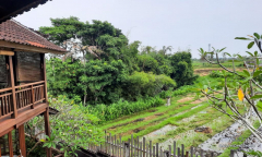 Image 3 from 3 Bedroom Villa for Rent & Sale Leasehold in Canggu