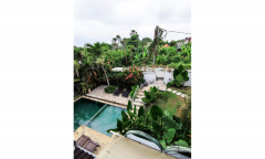 Image 3 from 4 Bedroom Villa for Yearly Rental in Tumbak Bayuh - North Pererenan