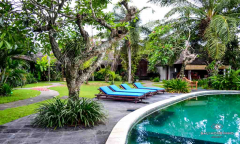 Image 3 from 5 Bedroom Villa For Yearly Rental in Canggu