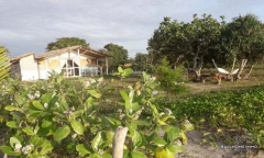 Image 2 from 6 Bedroom Beachfront Resort For Sale Freehold in Sumba