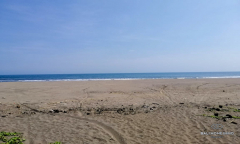 Image 1 from Beachfront Land For Sale Freehold in Balian - Tabanan