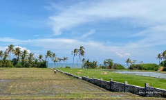 Image 1 from Beachfront land for sale freehold in Tabanan - Kedungu