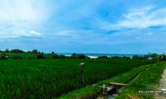 Image 3 from Terrain en bord de mer à vendre bail à Tabanan - Pasut Beach