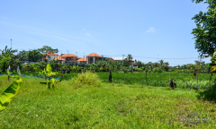 Image 3 from Land For Leasehold In Canggu