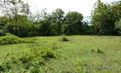 Image 2 from Land For Sale Freehold in Balangan - Bukit Peninsula