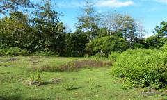 Image 1 from Land For Sale Freehold in Balangan - Bukit Peninsula