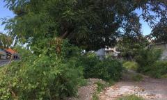 Image 2 from TANAH DIJUAL DI BERAWA