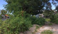 Image 3 from TANAH DIJUAL DI BERAWA