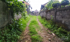 Image 3 from Land for sale freehold in Canggu - North Side
