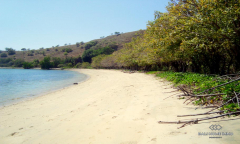 Image 3 from Beachfront land for sale freehold in Sumbawa