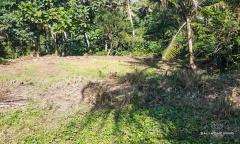 Image 1 from Tanah dijual hak milik di Gianyar dekat Pantai Saba