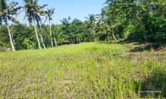 Image 3 from Tanah dijual hak milik di Gianyar dekat Pantai Saba