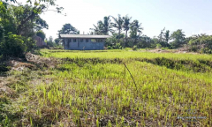 Image 2 from Tanah dijual hak milik di Gianyar dekat Pantai Saba