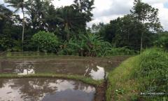 Image 1 from Terrain à vendre en pleine propriété à Kaba-Kaba