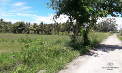 Image 3 from Land For Sale Freehold in North Lombok