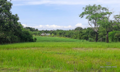 Image 1 from Land For Sale Freehold in Pererenan Canggu