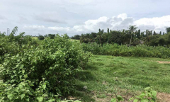 Image 2 from LAND FOR SALE FREEHOLD IN PERERENAN