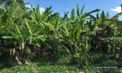 Image 2 from Tanah Dijual di Pererenan