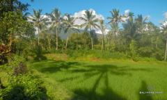 Image 2 from Terrain à vendre en pleine propriété à Pupuan - Tabanan