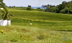 Image 1 from Land for sale freehold in Selemadeg, Tabanan