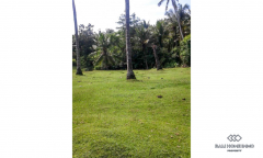 Image 1 from Land for sale freehold in Tabanan - Balian