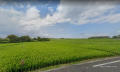 Image 1 from Land for sale freehold in Tabanan