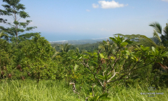 Image 1 from Land with Ocean View for Sale Freehold in Selemadeg, Tabanan