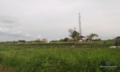 Image 2 from Land for sale freehold in Tanah Lot Area