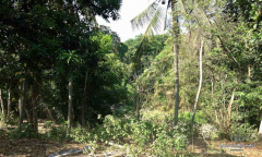 Image 3 from Land for sale freehold in Tanah Lot