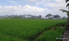 Image 2 from Terrain à vendre en pleine propriété à Tanah Lot - Cemagi