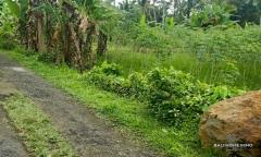 Image 2 from Terrain à vendre à Ubud