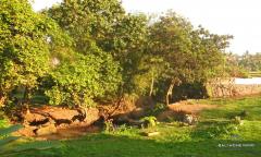 Image 2 from Dijual SHM Tanah dengan Pemandangan Sungai Di Umalas