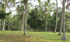 Image 1 from Land for sale freehold near beach in Tabanan - Soka