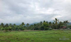 Image 1 from Land for Sale Freehold Near Lovina Beach