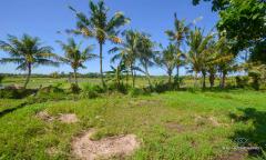 Image 1 from Terrain à vendre meilleur investissement à Leasehold à Kedungu - Tabanan