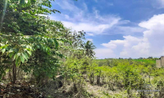 Image 1 from Land For Sale Leasehold in Babakan - North Canggu