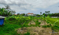 Image 2 from Land For Sale Leasehold in Batu Bolong - Canggu