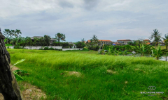 Image 1 from Land For Sale Leasehold in Batu Bolong - Canggu