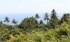Image 2 from Tanah Dikontrakkan Jangka Panjang di Lovina
