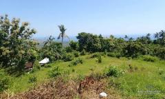 Image 1 from Tanah Dikontrakkan Jangka Panjang di Lovina