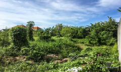 Image 2 from LAND FOR SALE LEASEHOLD IN CANGGU BERAWA