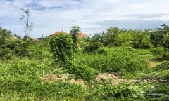 Image 1 from LAND FOR SALE LEASEHOLD IN CANGGU BERAWA