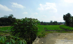 Image 3 from Land For Sale Leasehold in Canggu - Padonan