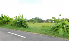Image 3 from Land for Sale Leasehold in Canggu Residential Area