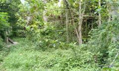 Image 3 from Terrain à vendre à Leasehold à Kaba-Kaba