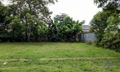 Image 1 from Land for sale leasehold in Kertalangu